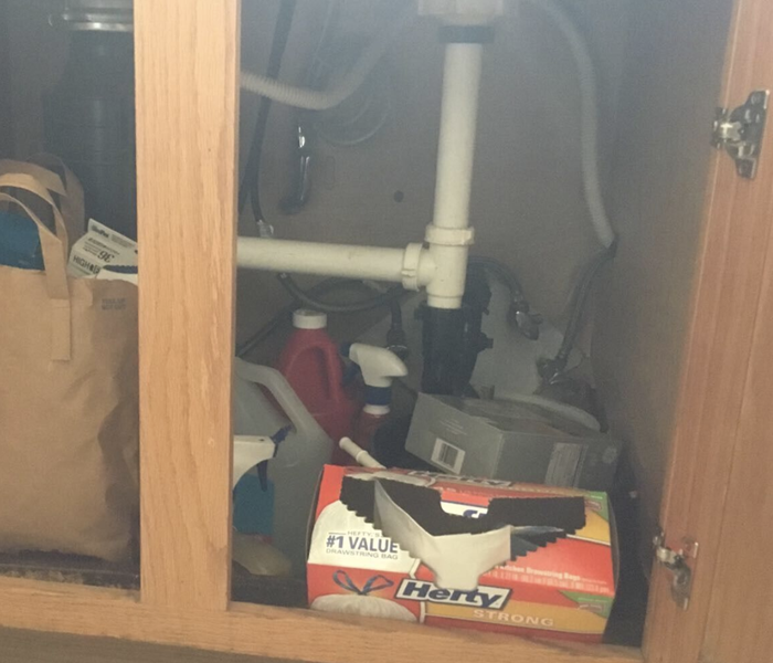 under the sink cabinet doors open revealing pipes and miscellaneous cleaning supplies