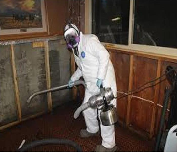 Mold Remediation Redlads/ Yucaipa Residents:  Follow These Mold Safety Tips If You Suspect Mold