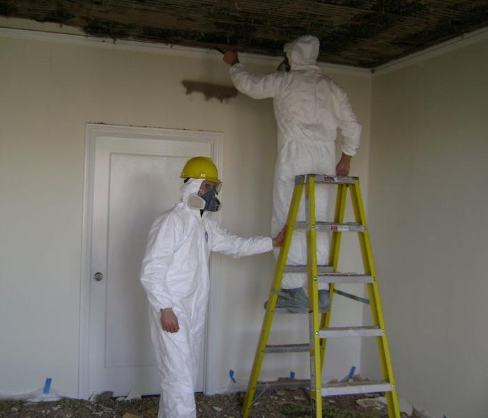 Mold Remediation Redlands/Yucaipa Residents:  Follow These Mold Safety Tips If You Suspect Mold