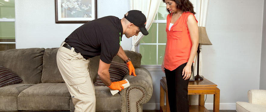 Redlands, CA carpet upholstery cleaning
