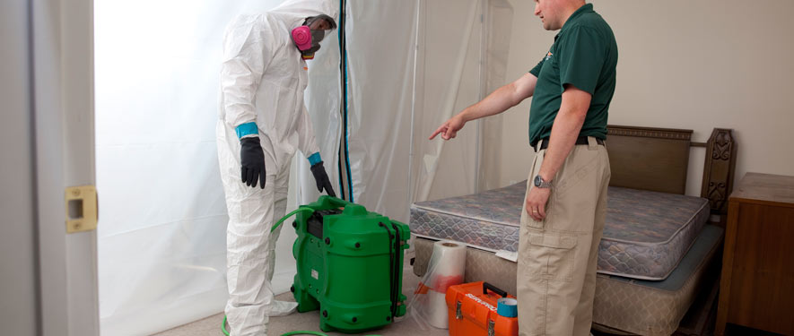 Redlands, CA mold removal process